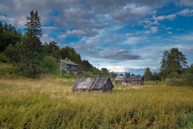 Oude houten huizen in een dorp in noord-rusland in de buurt van het bos in de zomer
