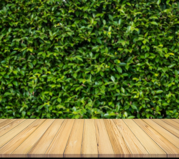 Oude houten plank met abstracte natuurlijke groene bladerenachtergrond voor productvertoning