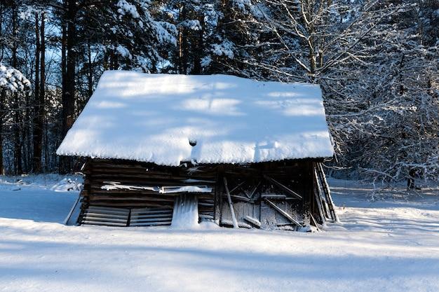 Oude houten schuur in het bos
