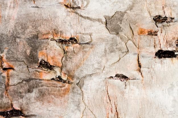 Oude houten textuur met gehelen