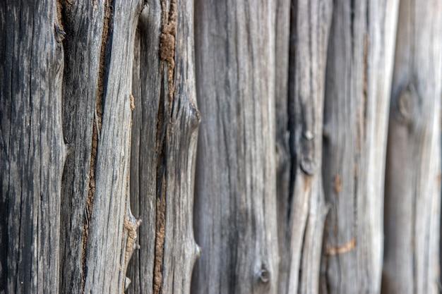 Oude houten verdediging met termiet op zwart