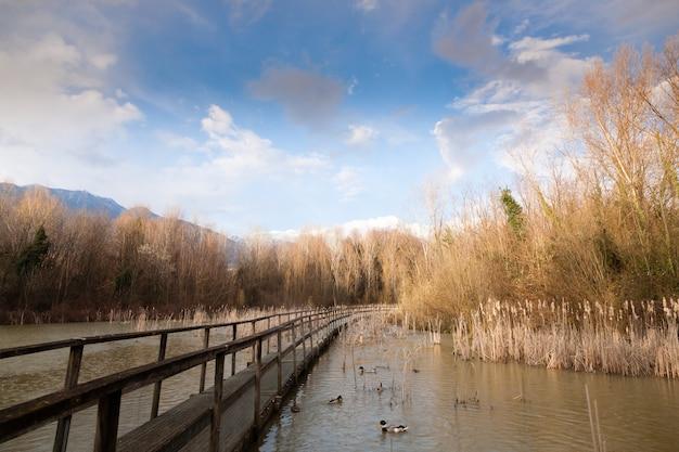 Oude houten voetgangersbrug op lagune. buiten en natuur. landelijk panorama