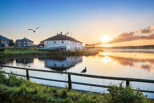 Oude huizen van het dorp op de solovetsky-eilanden aan de oever van het heilige meer en een zeemeeuw