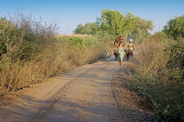 Oude indische dame die op landbouwbedrijfmanier loopt met geit