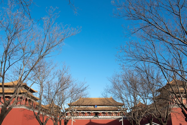 Oude koninklijke paleizen van de verboden stad met menigte van toeristen in peking, china