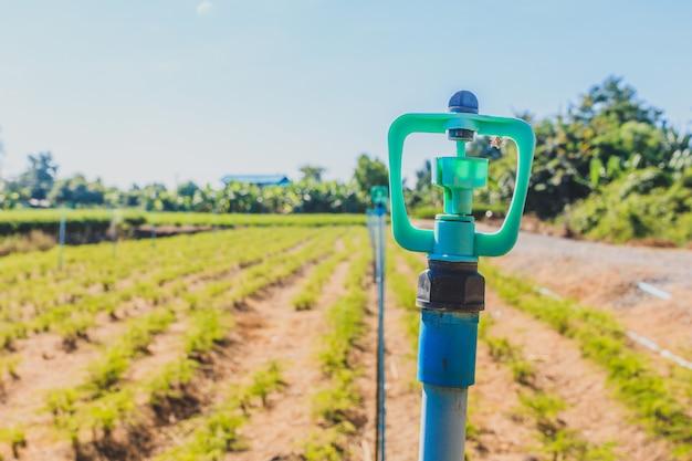 Oude kunststof water irrigatie sprinkler op gecultiveerde landbouw tuin