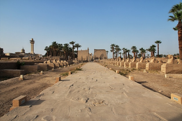 Oude luxor-tempel in luxor-stad, egypte