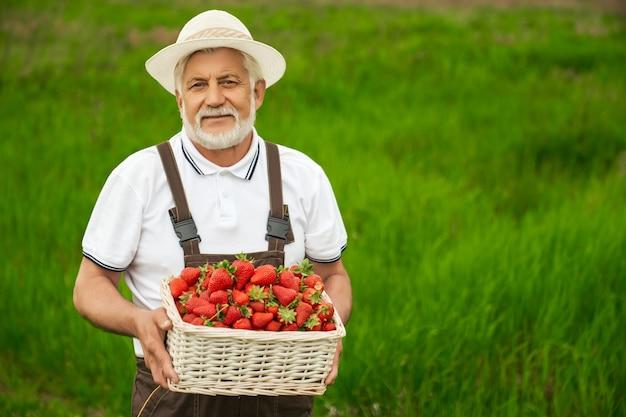 Oude man die op het veld staat met een mand met aardbeien