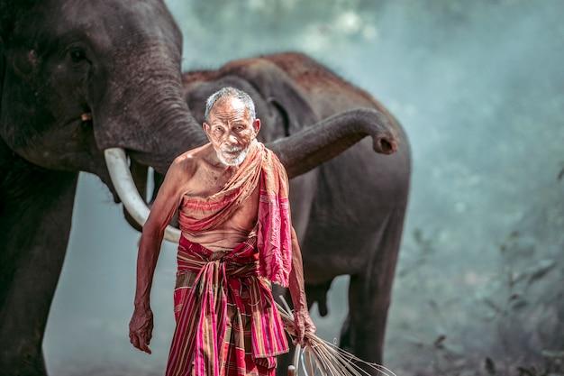 Oude man mahout het opvoeden van olifanten in het bos