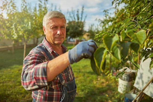 Oude man met een geruit overhemd en handschoenen die een boomtak aanraakt terwijl hij naar de camera kijkt