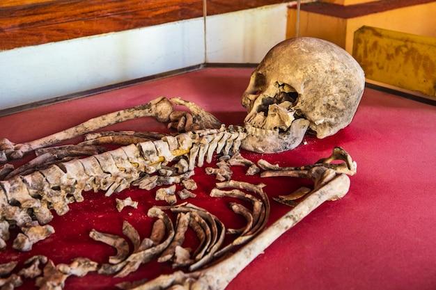 Oude menselijke skeletten gevonden in thailand.