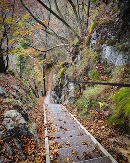 Oude metaaltreden in het bos dichtbij afgetapt, slovenië