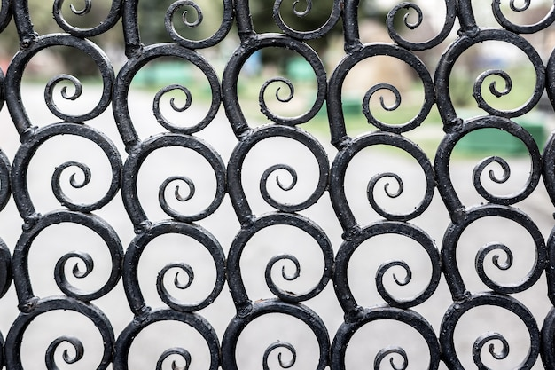 Oude metalen opengewerkte omheining in het stadspark van cultuur en recreatie