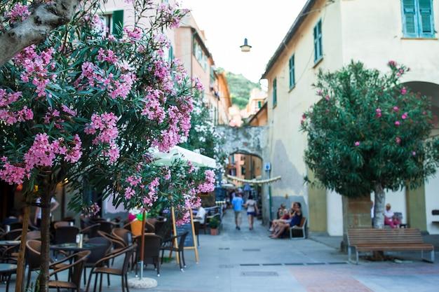 Oude mooie lege smalle straatjes in de kleine stad monterosso