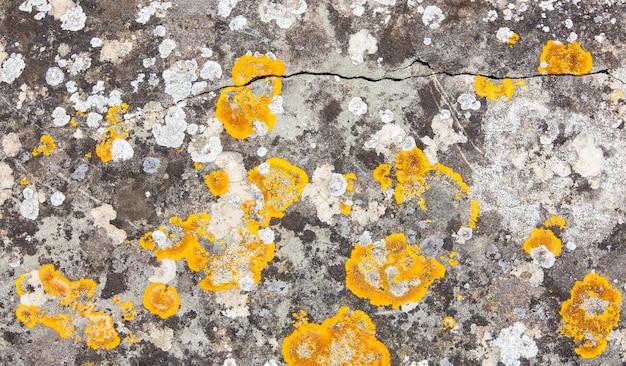 Oude natuursteen