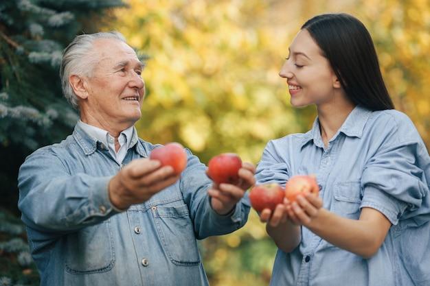 Oude oudste die zich in een de zomertuin bevindt met appelen