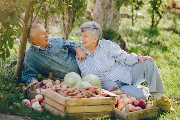 Oude paar zitten in een zomertuin met oogst