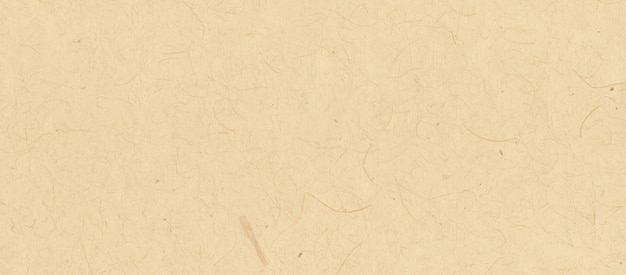 Oude perkamentpapier textuur achtergrond.