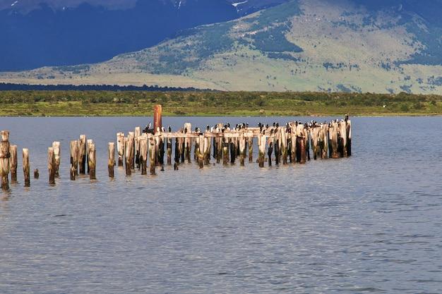 Oude pier in het bergmeer puerto natales chili
