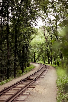 Oude spoorweg in het bos