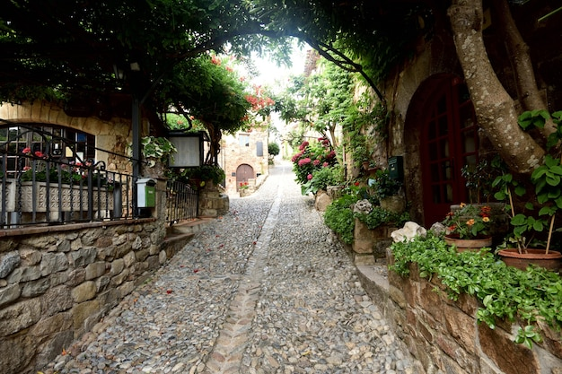 Oude stad van de provincie tossa de mar girona catalonië spanje