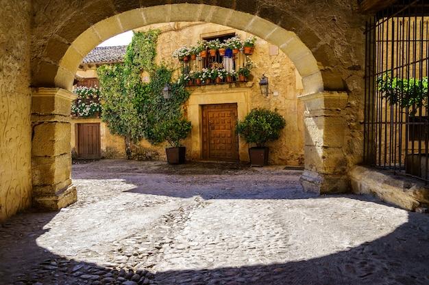 Oude stadsstraat met tunnel en stenen boog, huizen met bloemen en planten in vintage sfeer. pedraza, spanje.