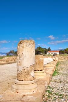 Oude tempelkolommen in kato, paphos, cyprus