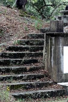 Oude trap op een park dat een mengeling creëert tussen de natuurlijke en de geciviliseerde menselijke wereld.