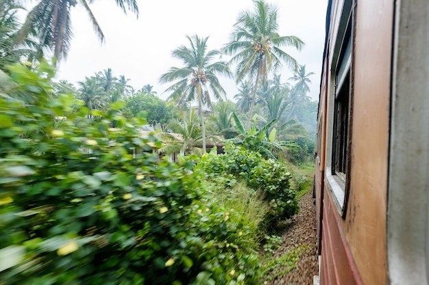 Oude trein die zich door platteland op een zonnige dag in sri lanka beweegt.