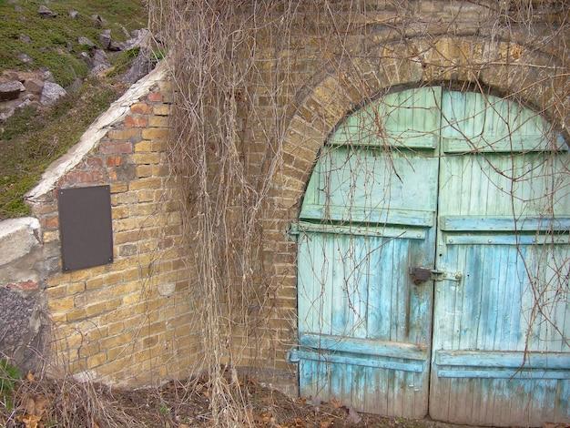 Oude turquoise houten deur naar een gesloten vintage kelder in een kerker met metselwerk en een kasteel. alles is bedekt met gedroogde wijnstokken.