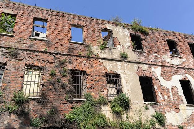 Oude verlaten ruïne de bouwbakstenen muur met bomen die op de steenmuur worden gekweekt