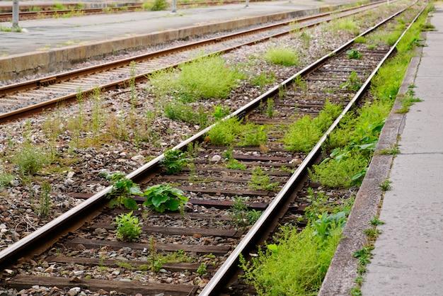 Oude verlaten spoorweg die met gras wordt overwoekerd
