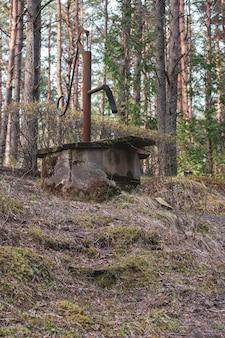 Oude verlaten waterkolom in het bos. retro waterpomp. rond de bomen. verticaal.