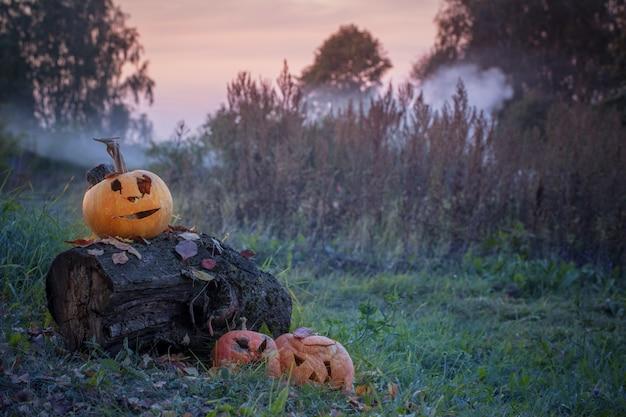 Oude verwende halloween-pompoen openlucht
