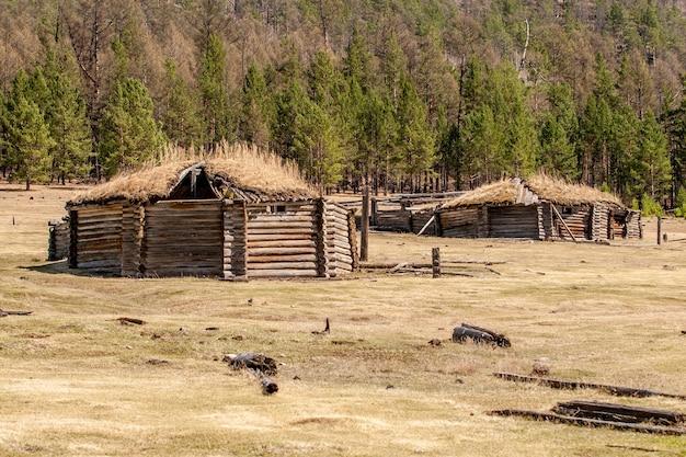 Oude verwoeste yurts in het veld tegen een bos. op het dak ligt oud gras. ywllow en bruine tinten.