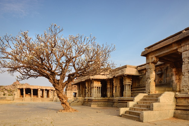 Oude vittala-tempel in hampi op zonsondergang