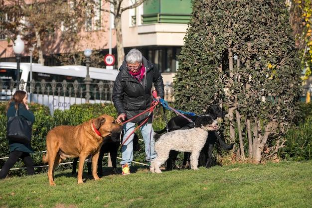 Oude vrouw die met honden in ciutadella-park loopt.