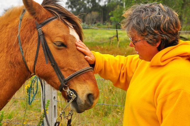 Oude vrouw streelde met haar paard