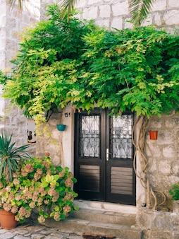 Oude zwarte deuren houtstructuur