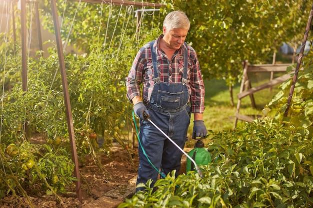 Ouder wordende tuinman die een pesticidentank draagt en planten in zijn tuin spuit