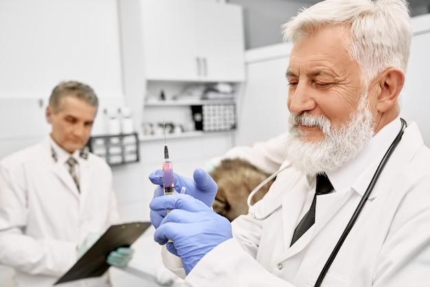 Oudere dierenarts arts met naald voor injectie.
