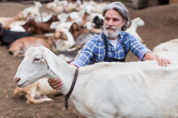 Oudere man op de boerderij