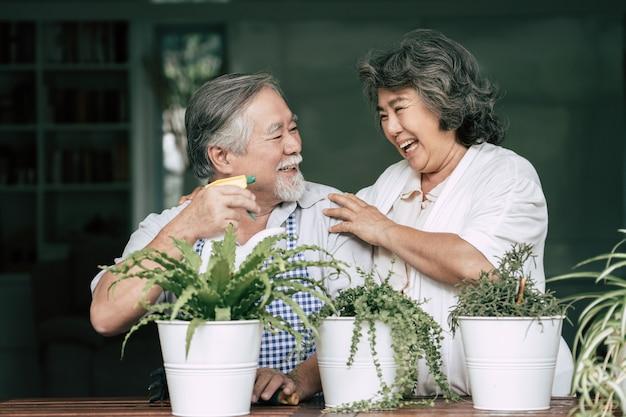 Oudere stellen die samen praten en bomen in potten planten.