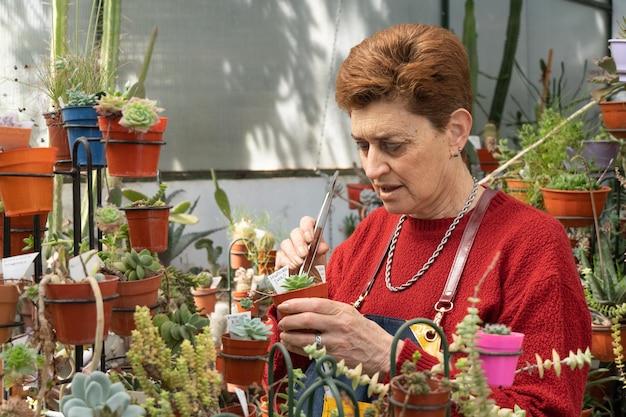 Oudere vrouw die voor haar tuin zorgt.