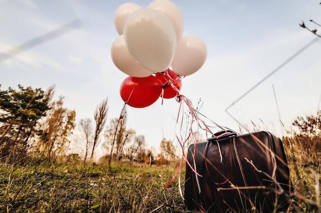 Ouderwetse bagage. bruine tas met rode en witte ballen. staande op het gras. buitenshuis. herfst. zonnige dag.