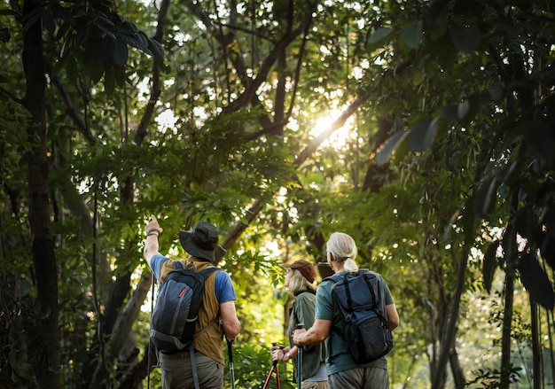 Oudsten die in een bos wandelen