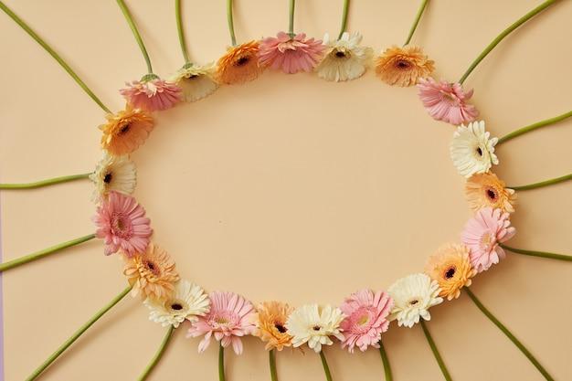 Ovaal frame van verschillende kleurrijke gerbera's op een beige achtergrond als postkaart voor valentijnsdag, 8 maart of moederdag. bovenaanzicht