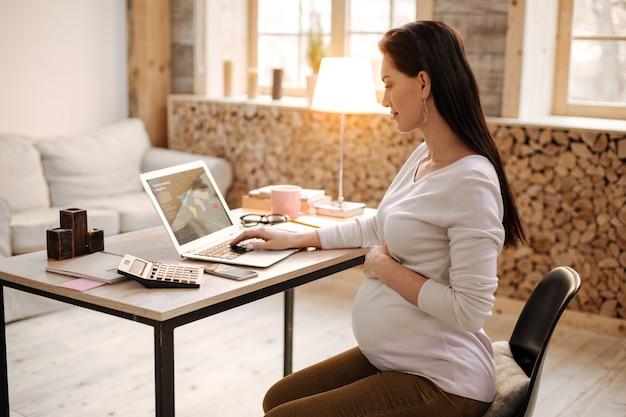 Overal zaken. vrij aardige zwangere vrouw met behulp van laptop terwijl poseren in profiel en thuis werken