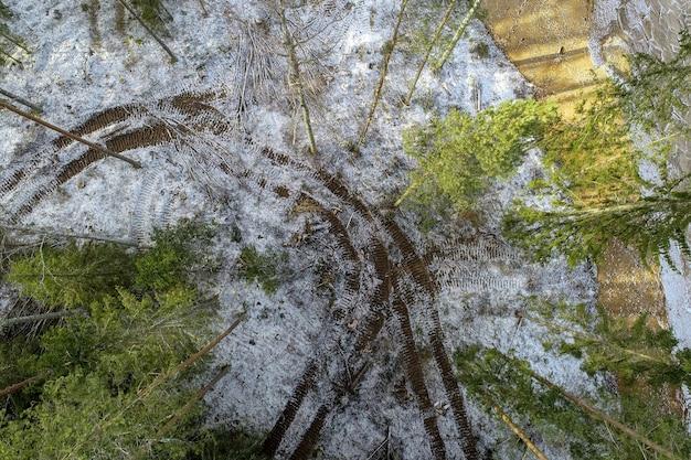 Overhead schot van een bos vol groene bomen bedekt met sneeuw