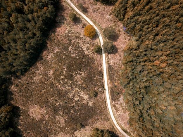 Overhead schot van een smalle weg in een bos in een puddletown forest in dorset, uk
